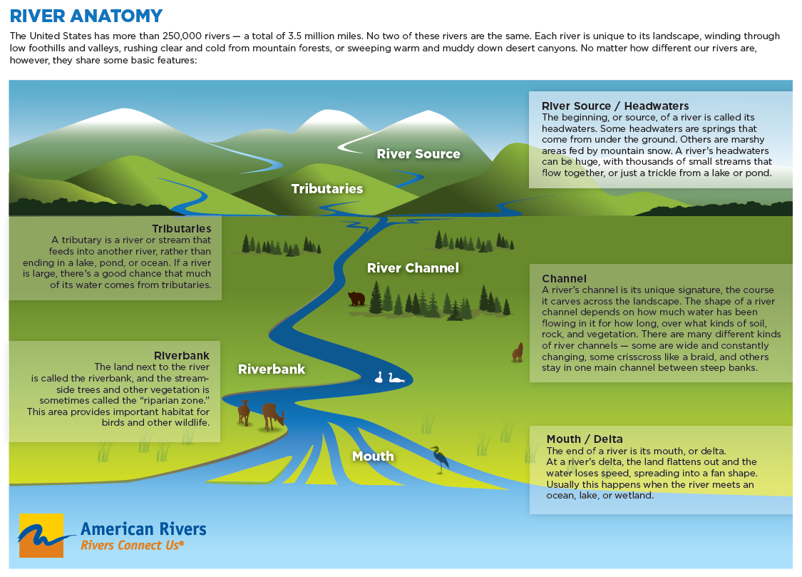 Eel River Ecology and Significant Species: anatomy of a river
