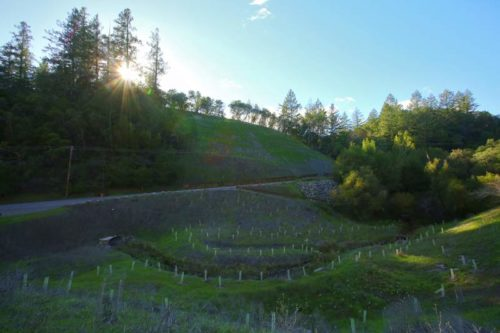 Dry Creek Rancheria seeks to restore Russian River tributary for fish, water supply
