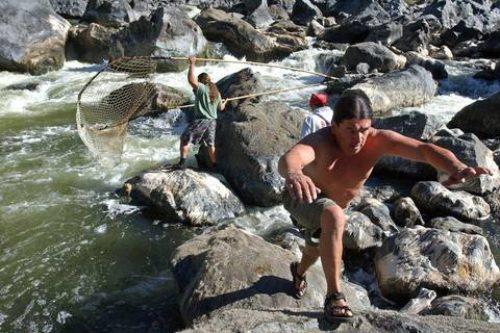 California Tribes Fear Abysmal Salmon Run May Trigger Public Health Crisis