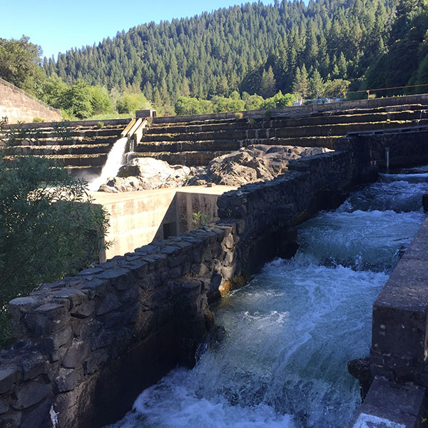 Cape Horn dam, downstream from Scott dam, is the smaller of the two dams on the Eel River and has a fish ladder.
