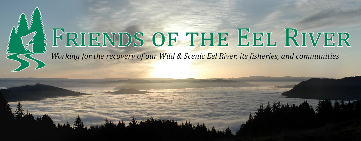 Defending a Future for the Eel River
