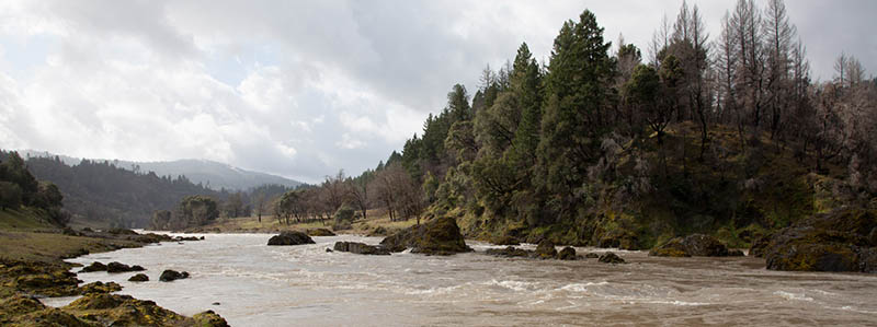 Restorative Vision for the Upper Eel River