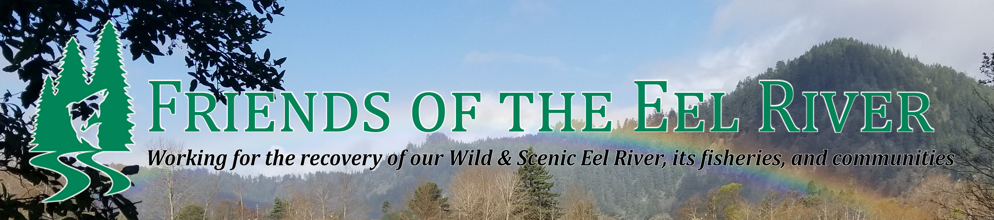 Securing a Future for Wild Eel River Salmon