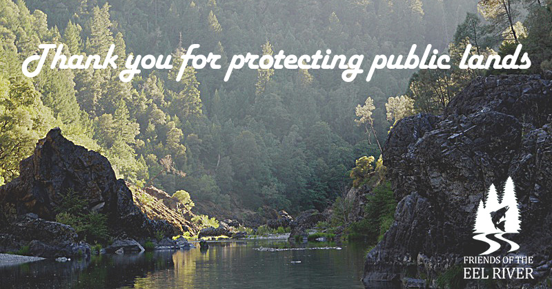 Action Alert: Support the Northwest California Wilderness, Recreation, and Working Forests Act